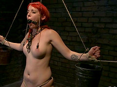 Sloane Soleil gets humiliated and toyed by her master