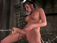 Anal and Pussy Fucking by Machine for Horny Tory Lane